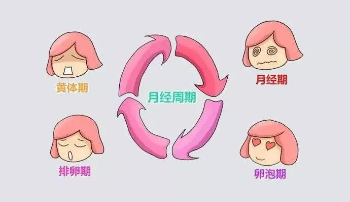 排卵日症状